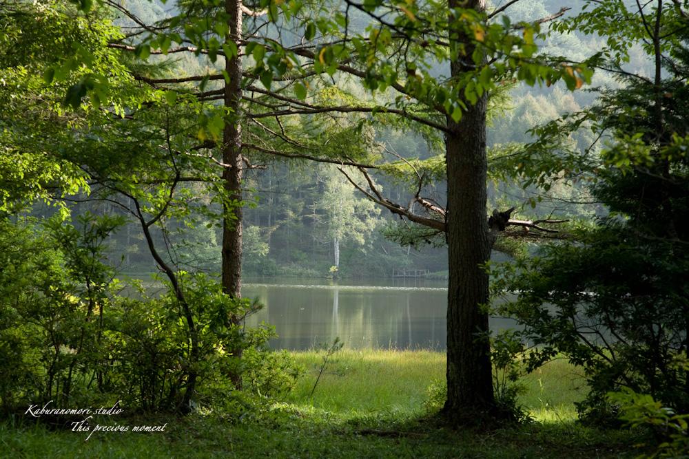 小さな湖畔_c0137403_17551741.jpg