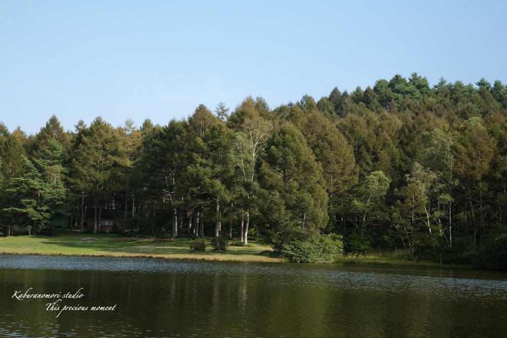 小さな湖畔_c0137403_17554916.jpg