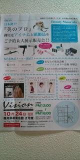 VISION 2010-2011_a0059209_2155275.jpg