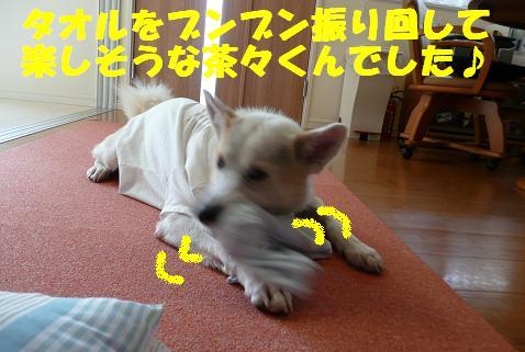 f0121712_15112899.jpg