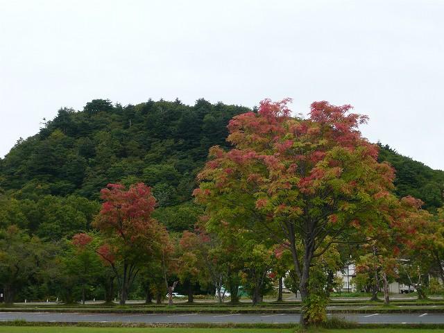 初秋の十和田湖♪_f0223914_226054.jpg