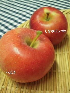 b0197225_10505513.jpg