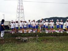 北新庄小学校3年生の子供達が枝豆収穫を体験しました_e0061225_1026349.jpg