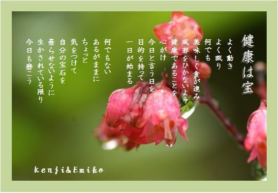 f0214467_4334586.jpg