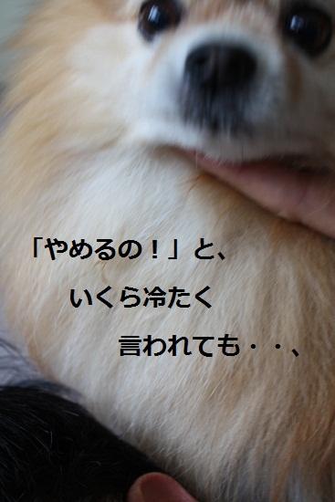 b0182968_13505826.jpg