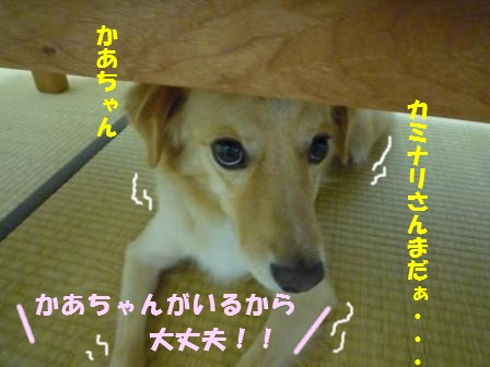 c0196992_1656465.jpg