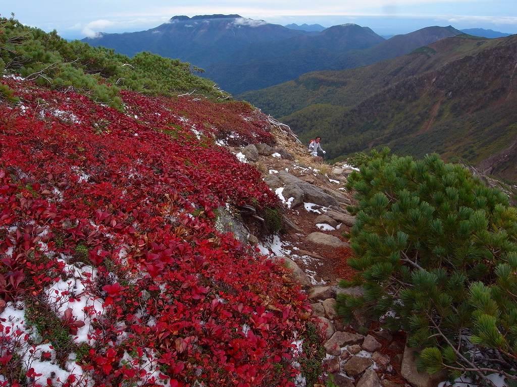 9月25日、ニペソツ山_f0138096_23214412.jpg