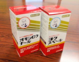 面白い恋人_e0077899_3383892.jpg