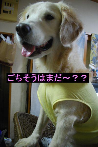 f0109202_229572.jpg