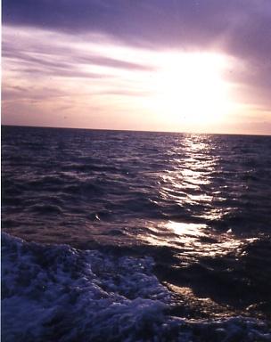 Under The Sun('08)_a0116217_985022.jpg