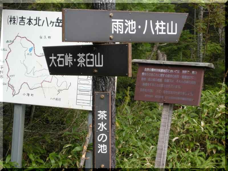 八ヶ岳の旅 9/20~22 ②_f0100825_2184980.jpg