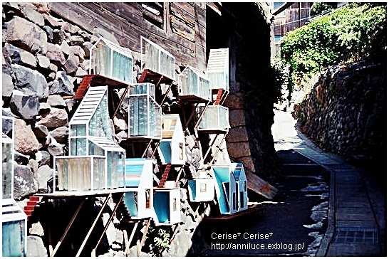 http://pds.exblog.jp/pds/1/201009/26/50/f0208350_1211221.jpg