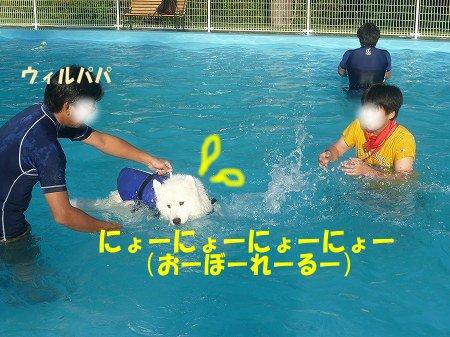 a0166954_152021.jpg