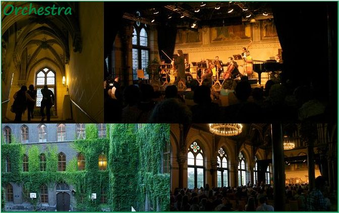 旅行7日目 Vienna(ウィーン) ②夜ぅ~_b0125769_1215075.jpg