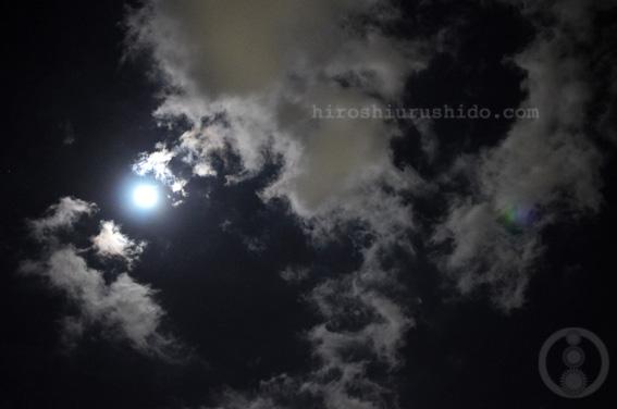 about last night_c0229485_23413833.jpg