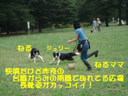 b0101991_11445880.jpg