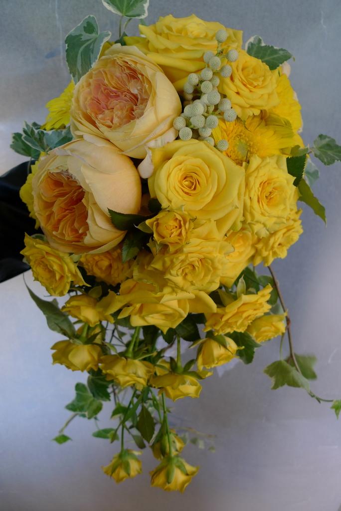 幸せの黄色い_b0171193_2136778.jpg