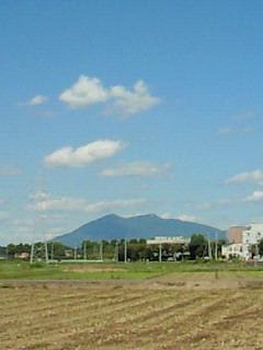 良い天気♪_d0091994_1913192.jpg