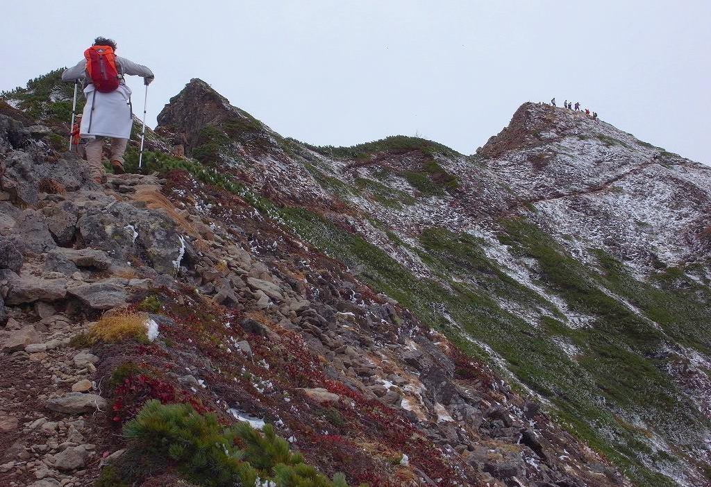 ニペソツ山-その1-_f0138096_1311823.jpg