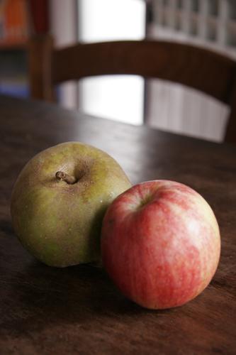 山の農家から有機リンゴが届きました_f0106597_190296.jpg