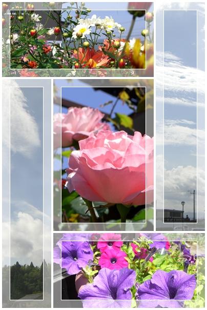 b0166327_2236256.jpg