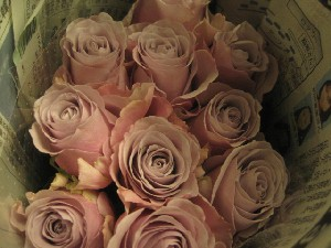 花盛りです。_c0102228_20514133.jpg