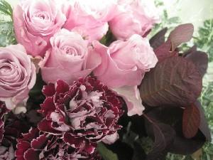 花盛りです。_c0102228_2057152.jpg