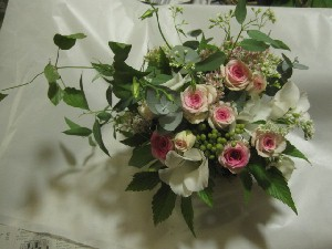 花盛りです。_c0102228_20573341.jpg