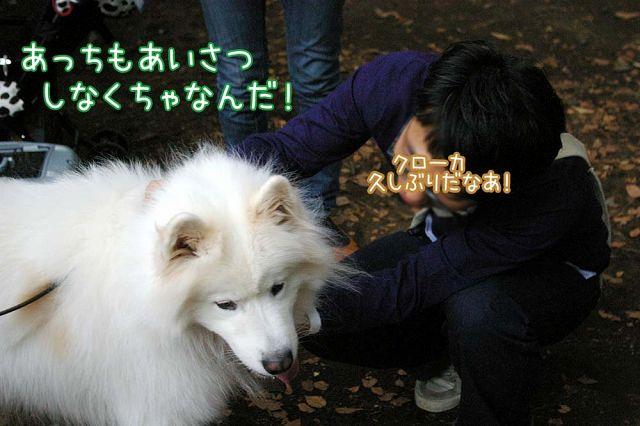 ともだちいっぱいおっきな公園_c0062832_21554960.jpg