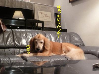 f0118135_2310631.jpg