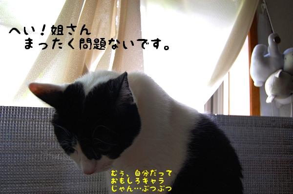 c0181639_0194098.jpg