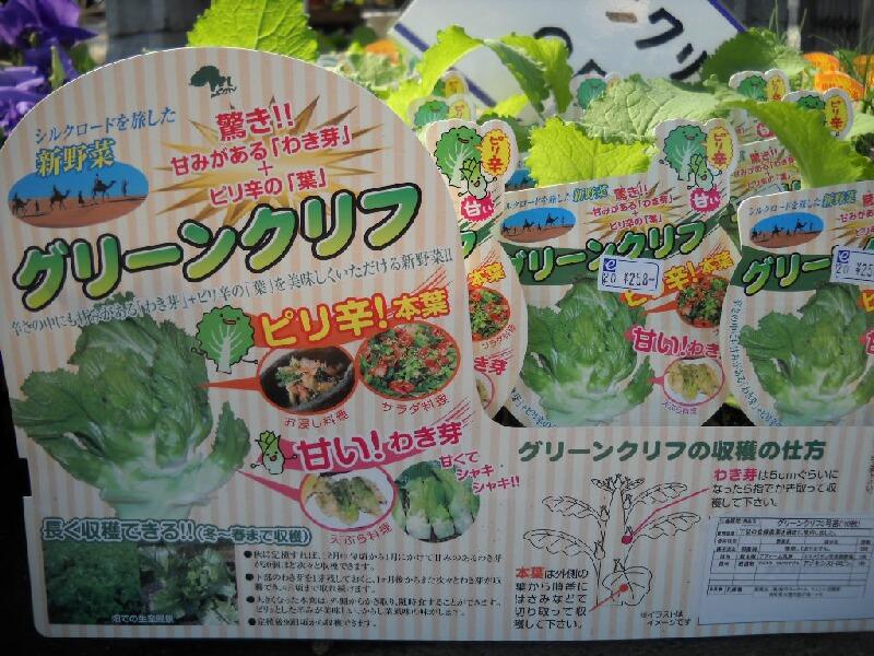グリーンクリフと言う野菜_f0018078_16571931.jpg