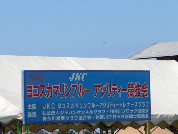 日曜、東扇島東公園に行ってきました_b0120492_16512533.jpg