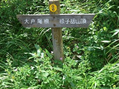 根子岳東峰登山(2)_d0116009_2184943.jpg