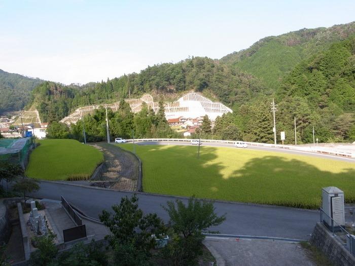 田んぼの風景_c0116915_23164687.jpg