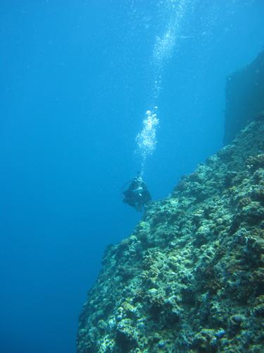 9月28日透明度の良い海♪_c0070933_21314191.jpg