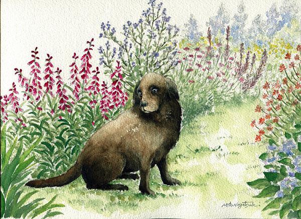 犬の水彩画_b0089338_1959553.jpg