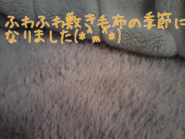 c0029442_1155986.jpg
