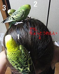 f0196665_0424977.jpg