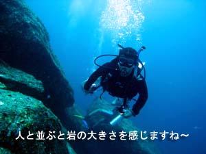 f0144385_2330579.jpg