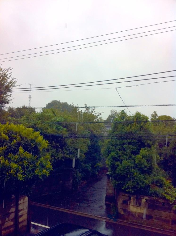 Purple Rain と狂った電車_f0236990_1613273.jpg