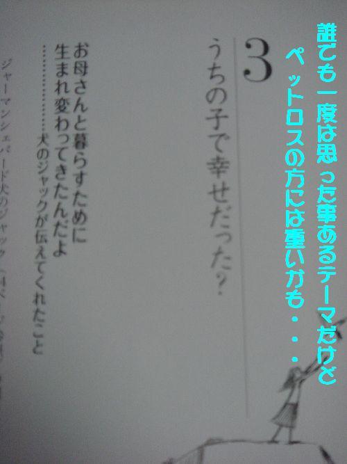 b0101991_2117197.jpg