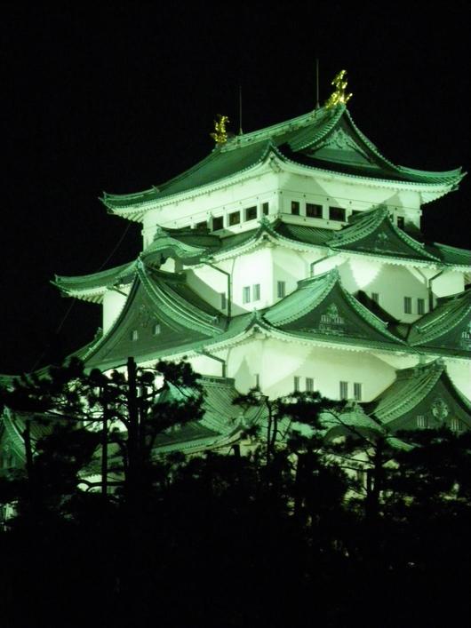 名古屋城ライトアップ☆_d0178891_22213561.jpg