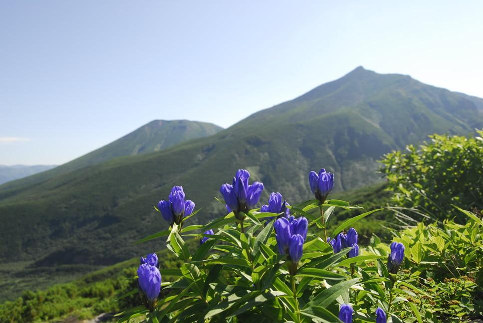 2010年8月 初秋の十勝岳、美瑛岳_c0219616_1392340.jpg