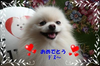 b0167519_8572421.jpg