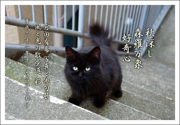 写真と俳句展_a0043323_21485566.jpg