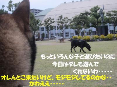 f0143123_2010794.jpg