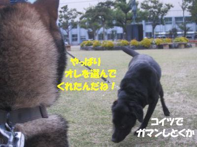 f0143123_2011226.jpg