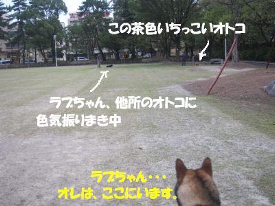 f0143123_2072216.jpg