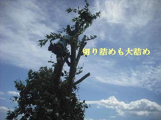 f0031037_2134830.jpg